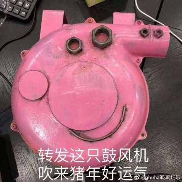 啥是佩奇  图片源自微博@zhuhai吃喝玩乐